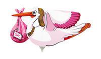 Mini folie ballon Stork girl