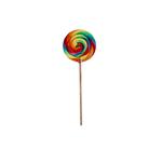 Spiraallolly regenboog nr.2 80 gr