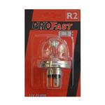 Pro fast autolamp R2 12v
