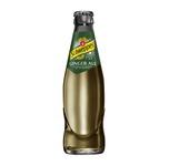 Schweppes ginger ale fles 25 cl