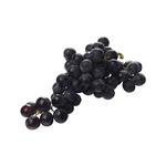 Blauwe druiven pitloos 500 gr