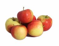 Appel jonagold 75 / 80 12 kg