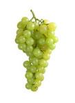 Druiven wit pitloos 500 gr