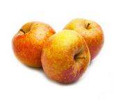 Goudreinette 70 tot 80 stuks per kilo