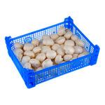 Champignon middel 3 kilo per kist