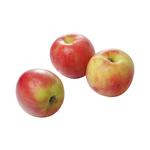 Elstar appels 1 kg
