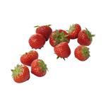 Aardbeien 500 gr