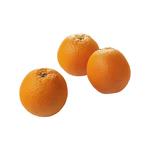 Perssinaasappels salustianas 17 kg