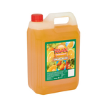 Raak vruchtensiroop sinaasappel 5 liter