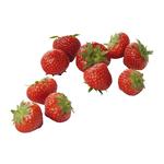 Aardbeien klein Elsanta  500gr. Holland