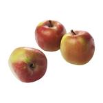 Jonagold appels doos 6 kg.