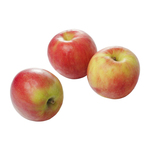 Elstar appels doos 6 kg.